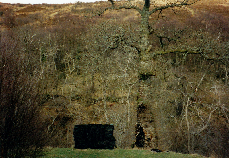 Andy_Goldsworthy (6)r