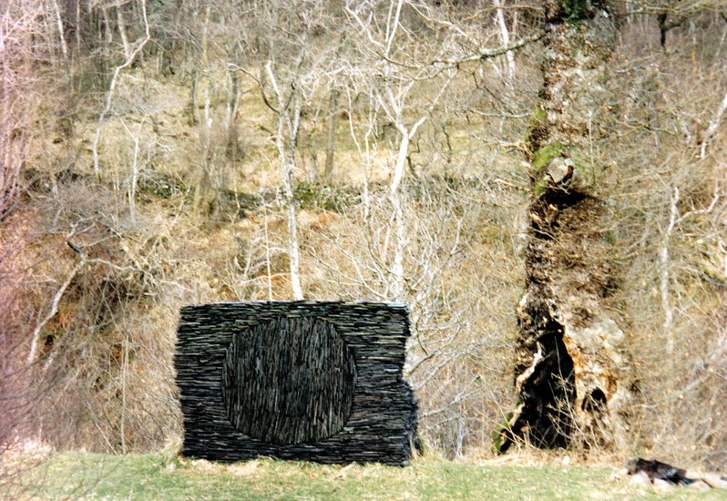 Andy_Goldsworthy (7)r