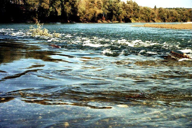 FlussLeben1