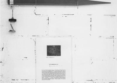 Mel Chin Plot Marker, Teil der Installation zu Revival Field, KKOe, Bea Voigt Galerie 1993r